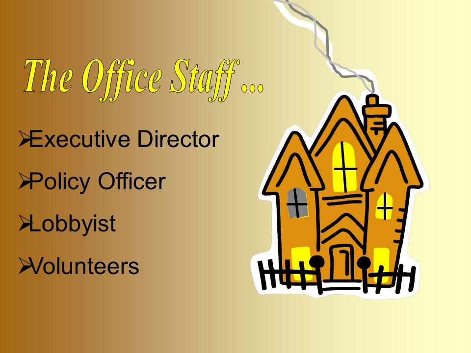 Executive Director  Policy Officer  Lobbyist  Volunteers