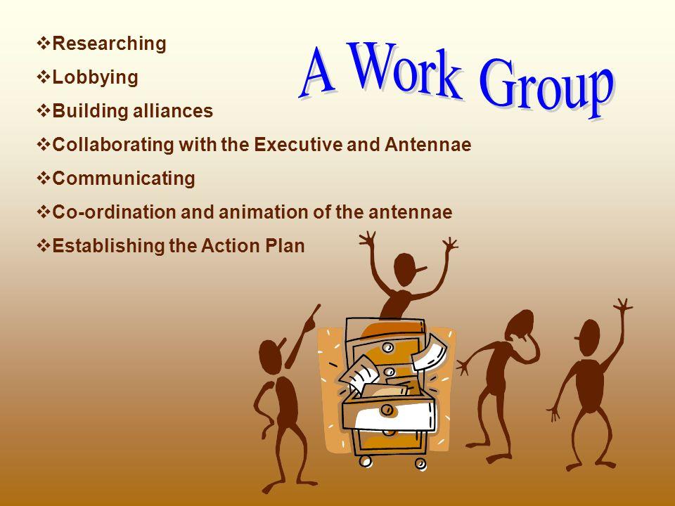 animating the organization