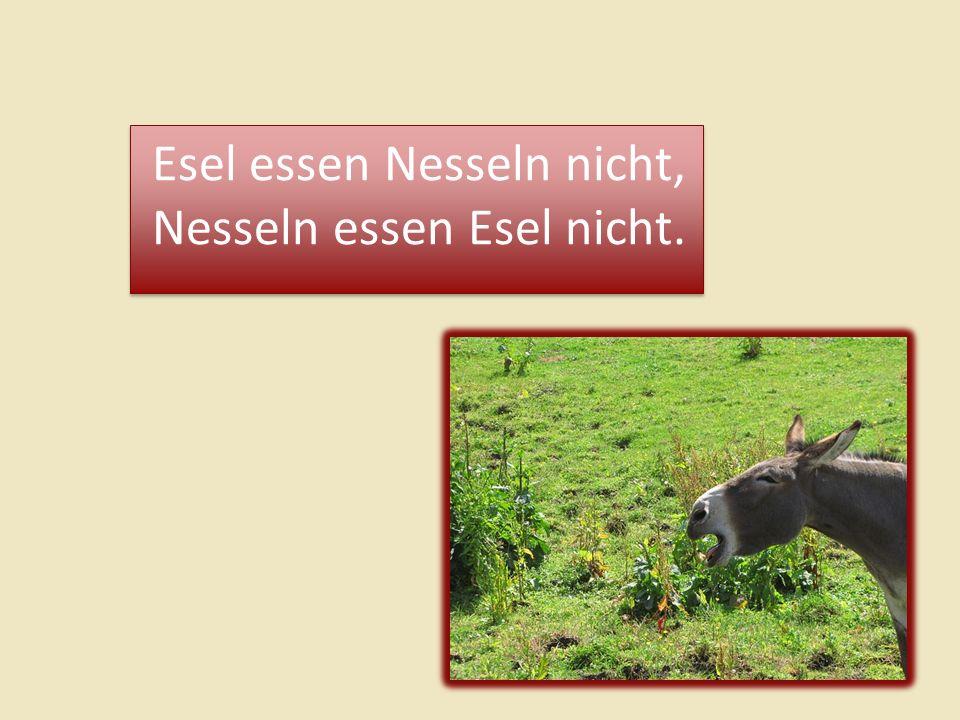 Esel essen Nesseln nicht, Nesseln essen Esel nicht. Esel essen Nesseln nicht, Nesseln essen Esel nicht.
