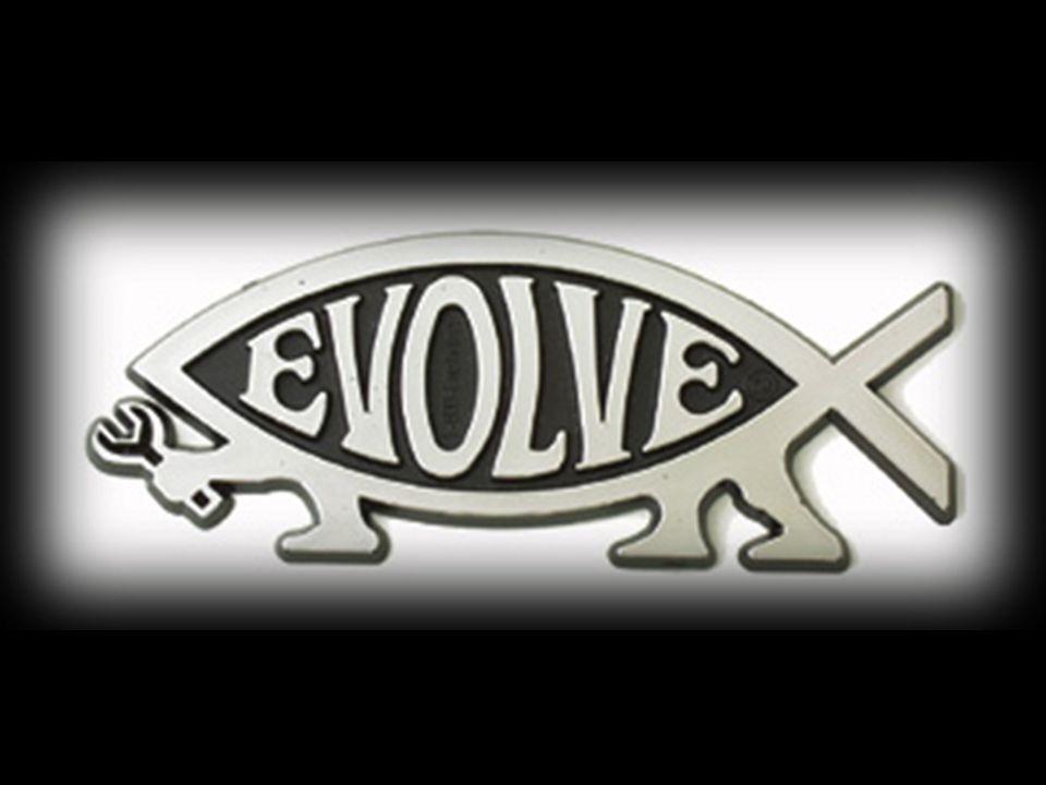 """2 Evolution 2009 """"Endless Forms Most Beautiful »Eine endlose Reihe der schönsten Formen«"""