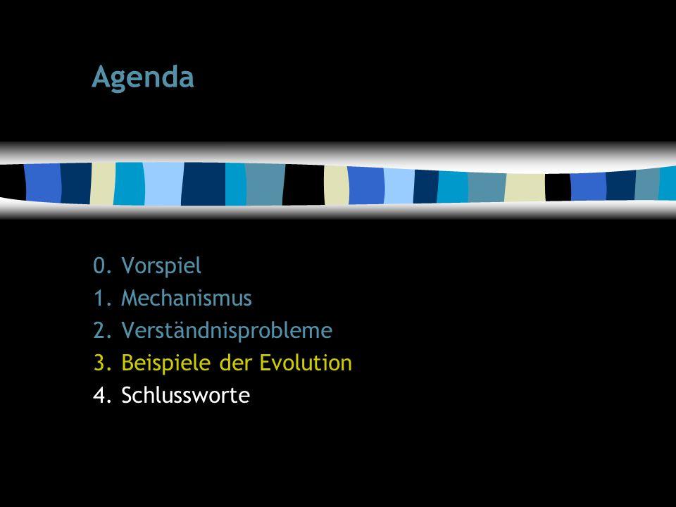 21 Agenda 0.Vorspiel 1.Mechanismus 2.Verständnisprobleme 3.Beispiele der Evolution 4.Schlussworte