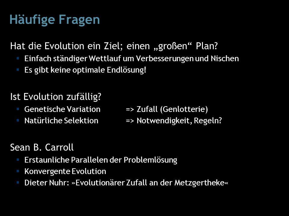 """Häufige Fragen Hat die Evolution ein Ziel; einen """"großen Plan."""