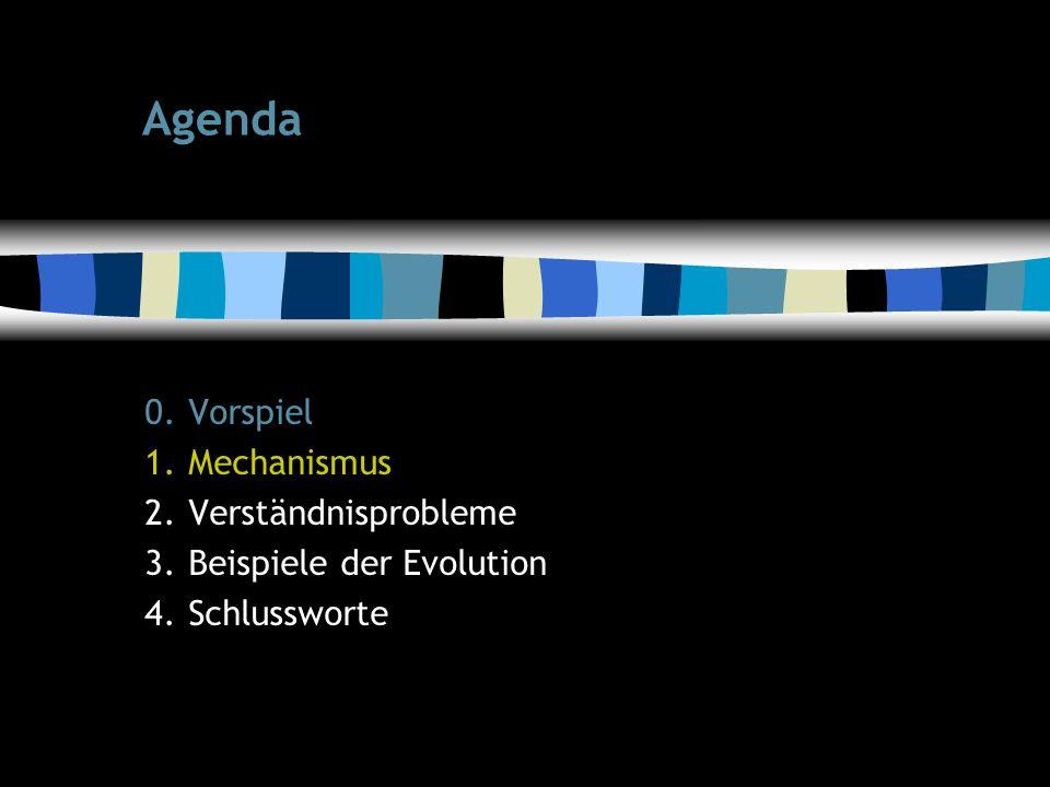 6 Agenda 0.Vorspiel 1.Mechanismus 2.Verständnisprobleme 3.Beispiele der Evolution 4.Schlussworte