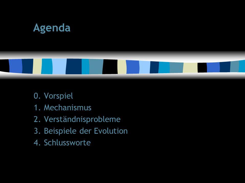 65 Agenda 0.Vorspiel 1.Mechanismus 2.Verständnisprobleme 3.Beispiele der Evolution 4.Schlussworte