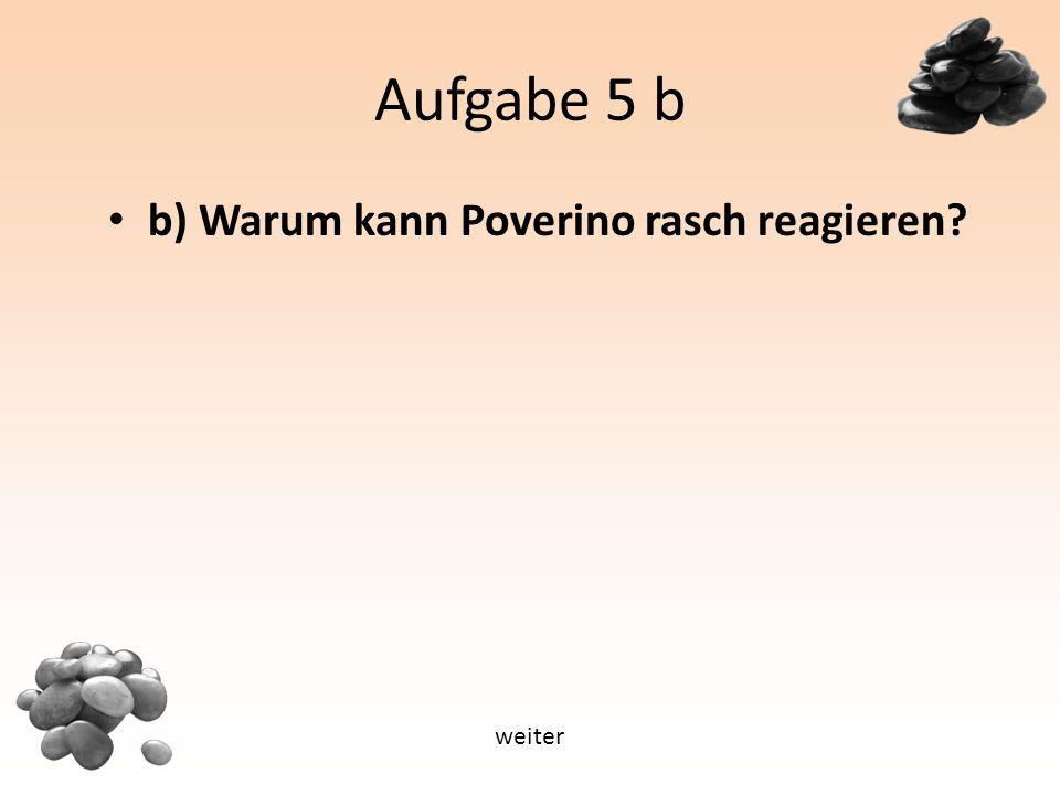 Aufgabe 5 b b) Warum kann Poverino rasch reagieren weiter