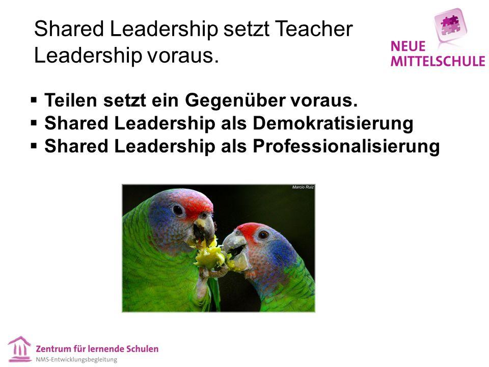 Teacher Leadership zeigt sich in den Rollen & Handlungen (angelehnt an Merideth 2006) Teacher Leaders sind Lehrer/innen, die 4 Rollen wahrnehmen…  Als Lehrer/in orientieren sie sich stets an der Leistungsentwicklung sowie den personalen Bildungsprozessen ihrer Schüler/innen  Als Professionist/in entwickeln sie ihre eigene Praxis im Hinblick auf ihre Wirksamkeit kontinuierlich weiter und berücksichtigen dabei Erkenntnisse aus der Fachliteratur und Weiterbildung  Als Vorbild haben sie positiven Einfluss auf ihre Kolleg/innen und setzen kollegial Lernprozesse in Gang  Als Botschafter/in tragen sie die Vision und die Ziele ihrer Schule nach innen und außen mit Wirksamkeit & Professionalität