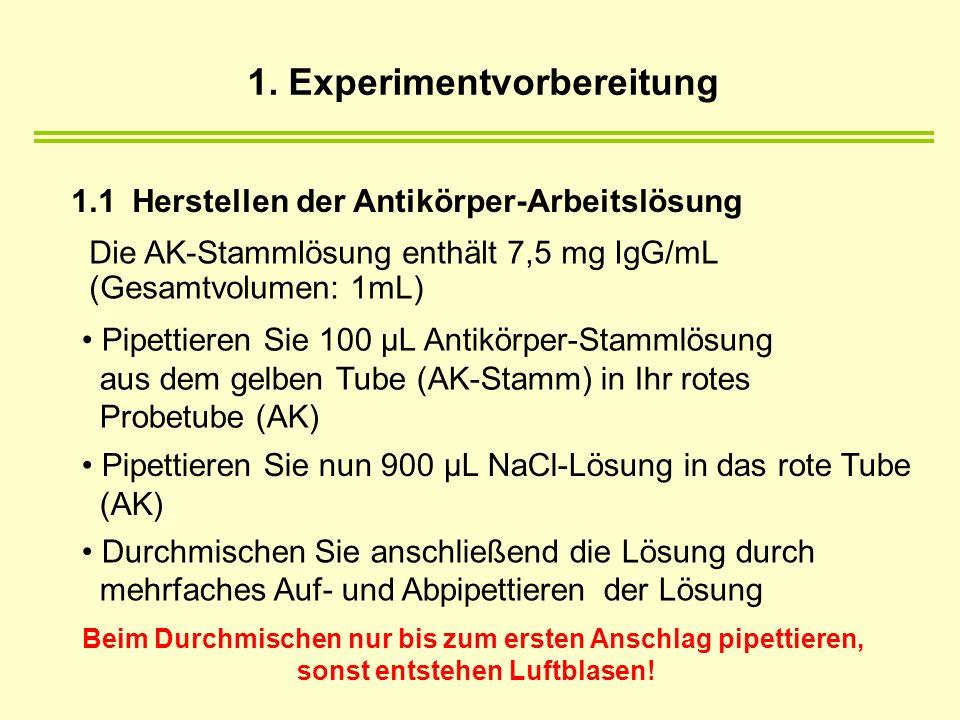 1.1 Herstellen der Antikörper-Arbeitslösung Die AK-Stammlösung enthält 7,5 mg IgG/mL (Gesamtvolumen: 1mL) Pipettieren Sie 100 µL Antikörper-Stammlösung aus dem gelben Tube (AK-Stamm) in Ihr rotes Probetube (AK) Pipettieren Sie nun 900 µL NaCl-Lösung in das rote Tube (AK) Durchmischen Sie anschließend die Lösung durch mehrfaches Auf- und Abpipettieren der Lösung Beim Durchmischen nur bis zum ersten Anschlag pipettieren, sonst entstehen Luftblasen.
