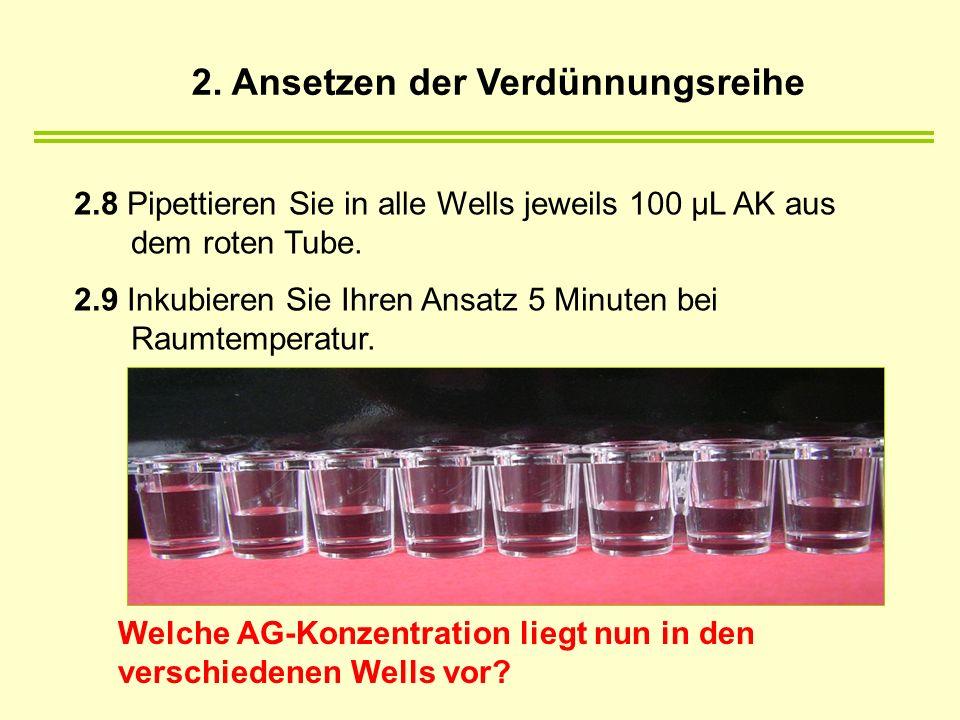 2.8 Pipettieren Sie in alle Wells jeweils 100 µL AK aus dem roten Tube. 2.9 Inkubieren Sie Ihren Ansatz 5 Minuten bei Raumtemperatur. 2. Ansetzen der