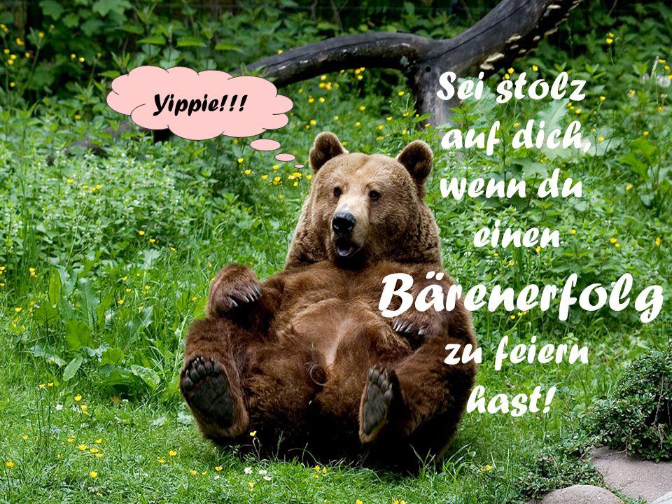 Lass dir nicht so leicht einen einen Bären aufbinden – Es sei denn, einen kleinen, süßen Kuschelbär!