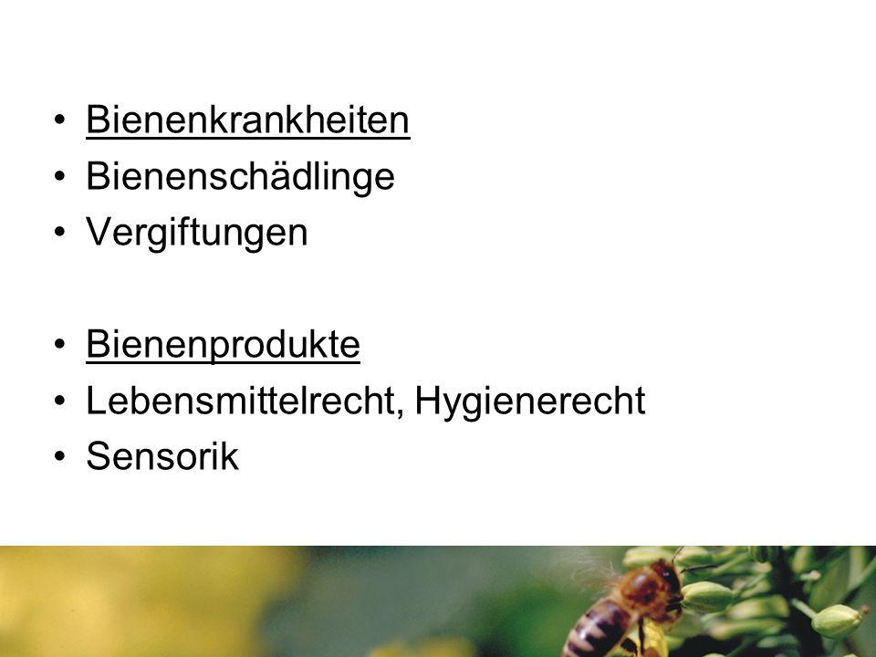 Bienenkrankheiten Bienenschädlinge Vergiftungen Bienenprodukte Lebensmittelrecht, Hygienerecht Sensorik