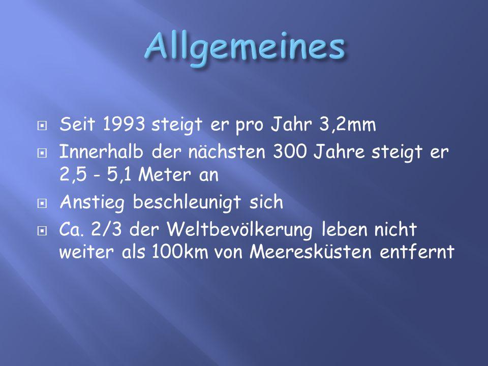  Seit 1993 steigt er pro Jahr 3,2mm  Innerhalb der nächsten 300 Jahre steigt er 2,5 - 5,1 Meter an  Anstieg beschleunigt sich  Ca.