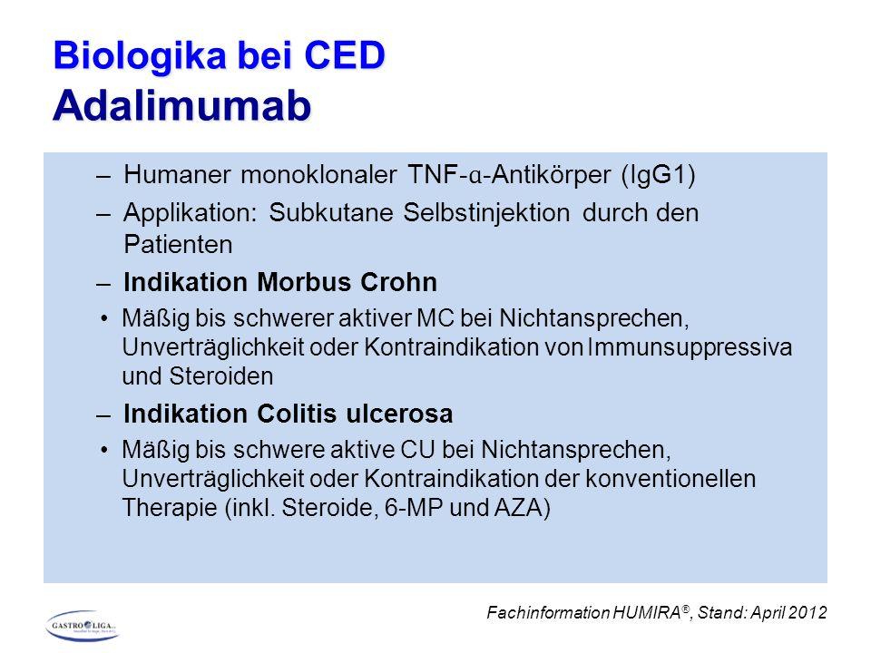 Biologika bei CED Adalimumab –Humaner monoklonaler TNF- ɑ -Antikörper (IgG1) –Applikation: Subkutane Selbstinjektion durch den Patienten –Indikation Morbus Crohn Mäßig bis schwerer aktiver MC bei Nichtansprechen, Unverträglichkeit oder Kontraindikation von Immunsuppressiva und Steroiden –Indikation Colitis ulcerosa Mäßig bis schwere aktive CU bei Nichtansprechen, Unverträglichkeit oder Kontraindikation der konventionellen Therapie (inkl.