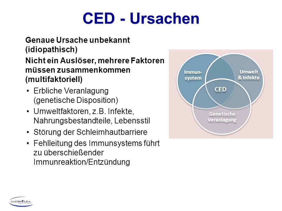 CED - Ursachen Genaue Ursache unbekannt (idiopathisch) Nicht ein Auslöser, mehrere Faktoren müssen zusammenkommen (multifaktoriell) Erbliche Veranlagung (genetische Disposition) Umweltfaktoren, z.B.