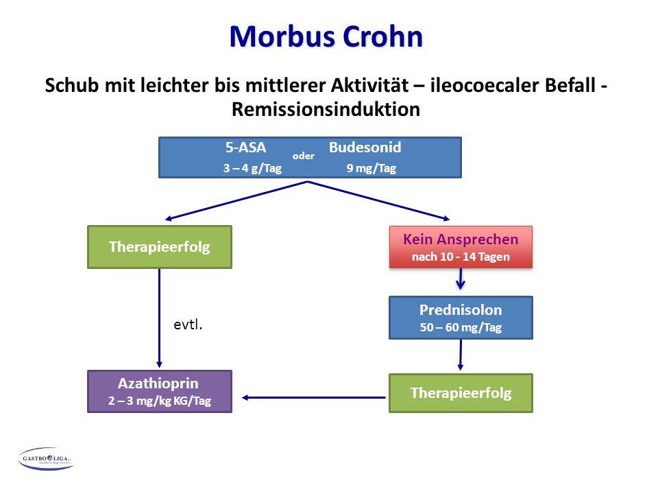 ) Morbus Crohn Schub mit leichter bis mittlerer Aktivität – ileocoecaler Befall - Remissionsinduktion 5-ASA oder Budesonid 3 – 4 g/Tag 9 mg/Tag Therap