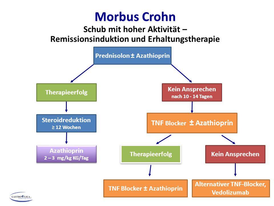 Morbus Crohn Schub mit hoher Aktivität – Remissionsinduktion und Erhaltungstherapie *Bei häufigen Schüben: ≥ 4 Jahre TNF Blocker ± Azathioprin Steroidreduktion ≥ 12 Wochen TNF Blocker ± Azathioprin Azathioprin 2 – 3 mg/kg KG/Tag Azathioprin 2 – 3 mg/kg KG/Tag Prednisolon ± Azathioprin Therapieerfolg Kein Ansprechen nach 10 - 14 Tagen Alternativer TNF-Blocker, Vedolizumab Kein Ansprechen Therapieerfolg