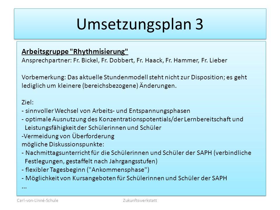 Umsetzungsplan 3 Carl-von-Linné-SchuleZukunftswerkstatt Arbeitsgruppe