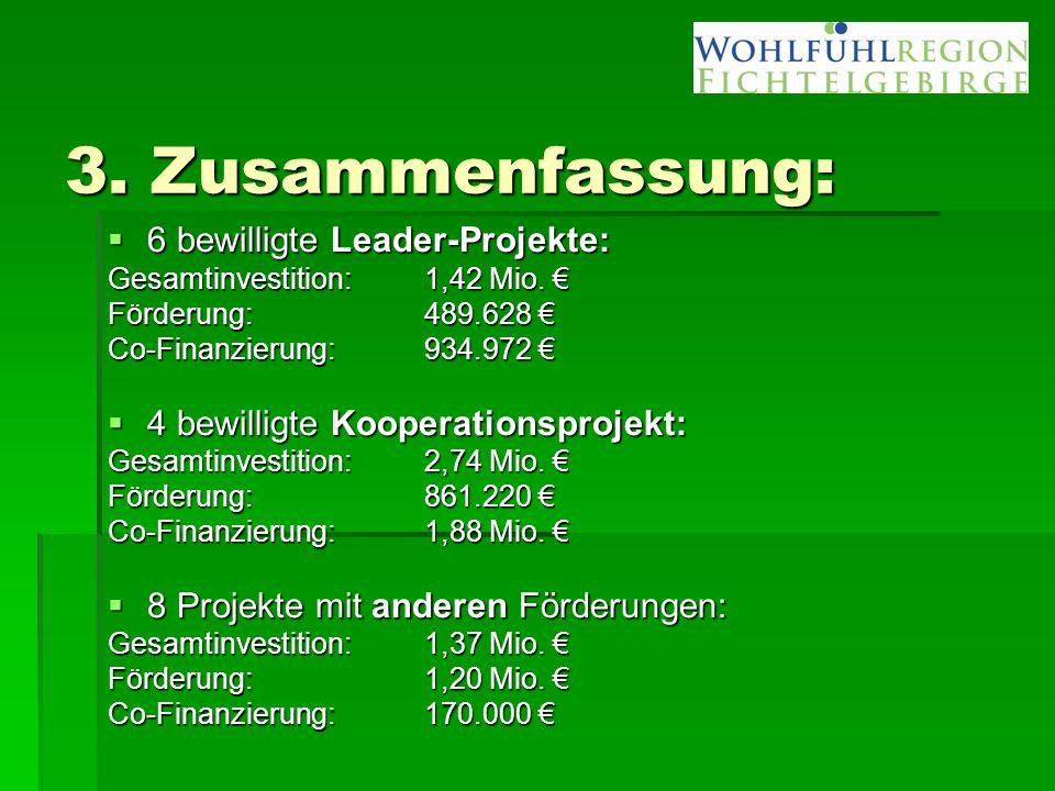 3. Zusammenfassung:  6 bewilligte Leader-Projekte: Gesamtinvestition: 1,42 Mio. € Förderung:489.628 € Co-Finanzierung:934.972 €  4 bewilligte Kooper