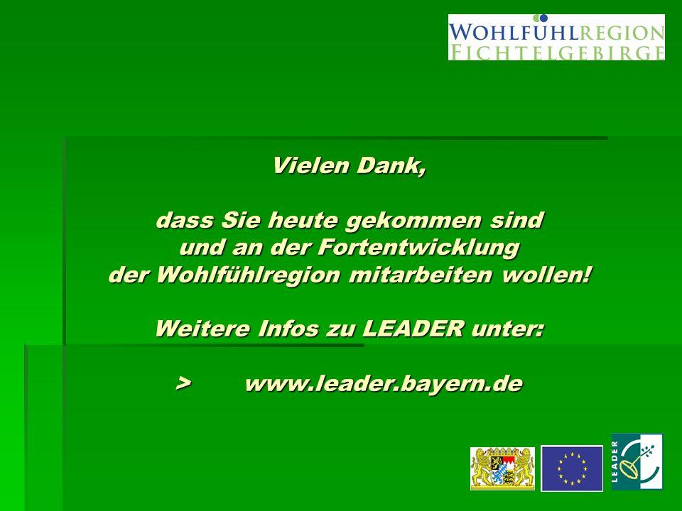 Vielen Dank, dass Sie heute gekommen sind und an der Fortentwicklung der Wohlfühlregion mitarbeiten wollen! Weitere Infos zu LEADER unter: >www.leader