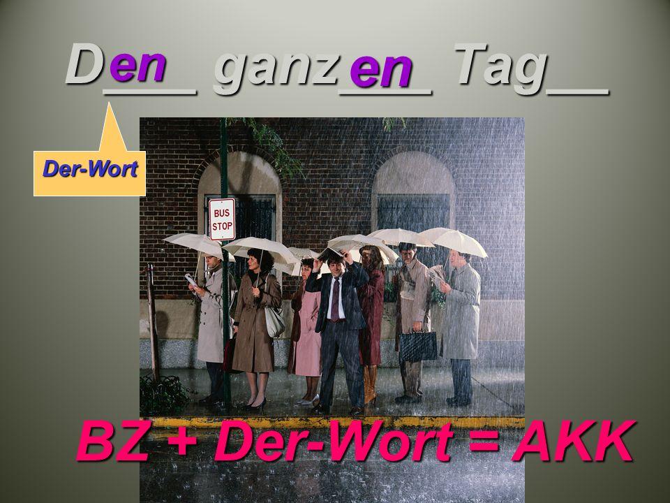 D___ ganz___ Tag__ enen BZ + Der-Wort = AKK Der-Wort