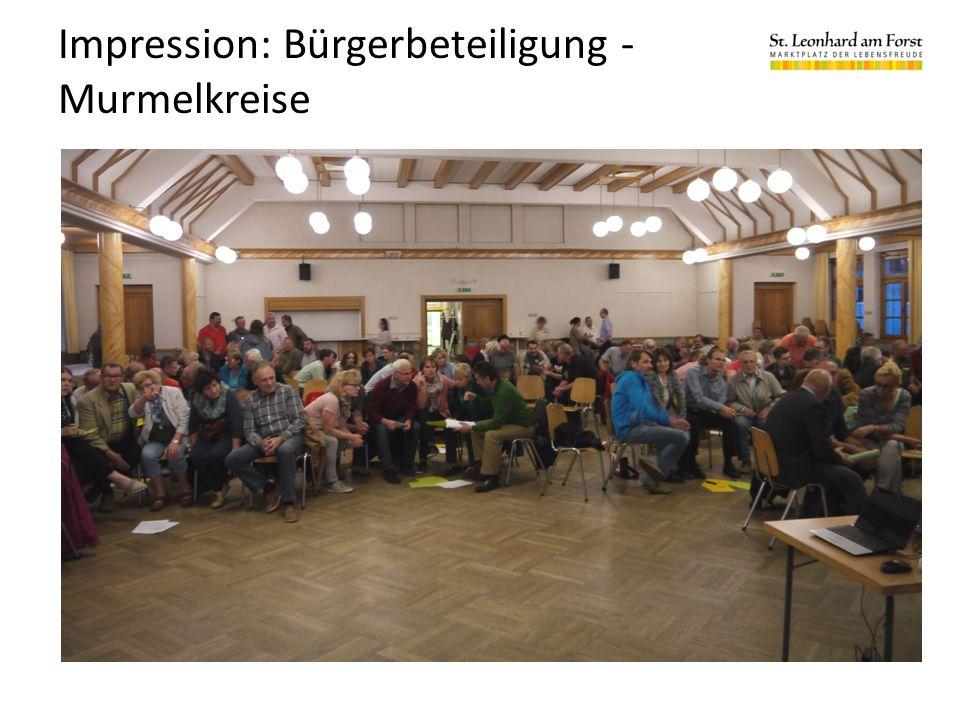 Impression: Bürgerbeteiligung - Murmelkreise