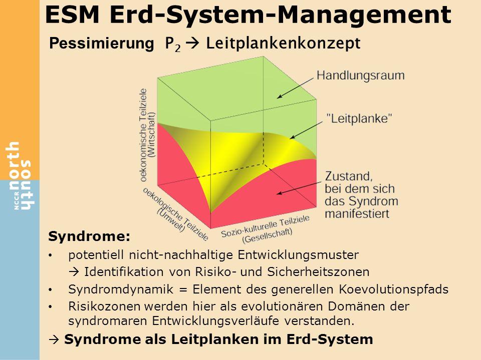Pessimierung P 2  Leitplankenkonzept Syndrome: potentiell nicht-nachhaltige Entwicklungsmuster  Identifikation von Risiko- und Sicherheitszonen Synd