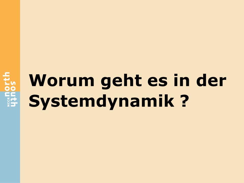 Worum geht es in der Systemdynamik ?