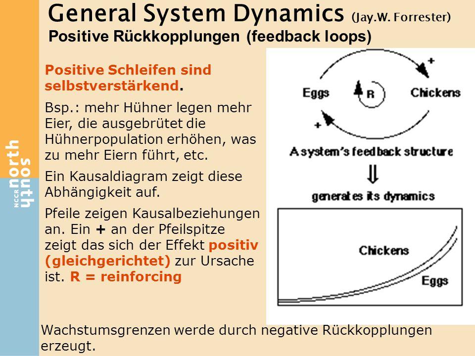 General System Dynamics (Jay.W. Forrester) Positive Rückkopplungen (feedback loops) Positive Schleifen sind selbstverstärkend. Bsp.: mehr Hühner legen