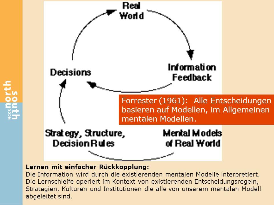 Lernen mit einfacher Rückkopplung: Die Information wird durch die existierenden mentalen Modelle interpretiert. Die Lernschleife operiert im Kontext v