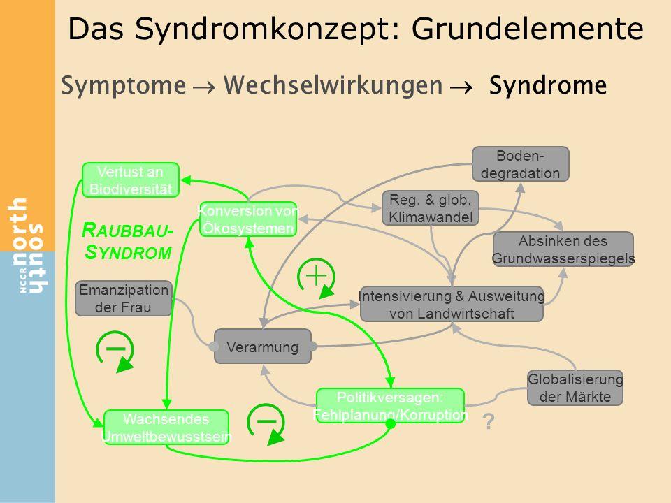 Symptome  Wechselwirkungen  Syndrome Konversion von Ökosystemen Verlust an Biodiversität Verarmung Emanzipation der Frau Wachsendes Umweltbewusstsei