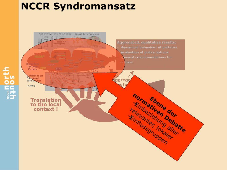 Ebene der normativen Debatte  Einbeziehung aller relevanter, lokaler  Einflussgruppen NCCR Syndromansatz