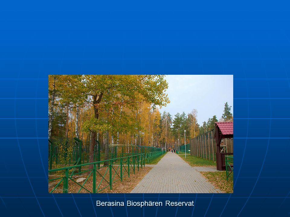 Berasina Biosphären Reservat