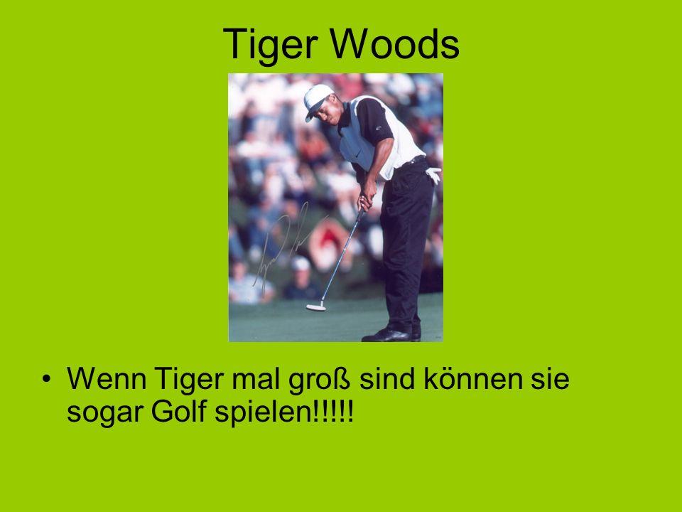 Tiger Woods Wenn Tiger mal groß sind können sie sogar Golf spielen!!!!!