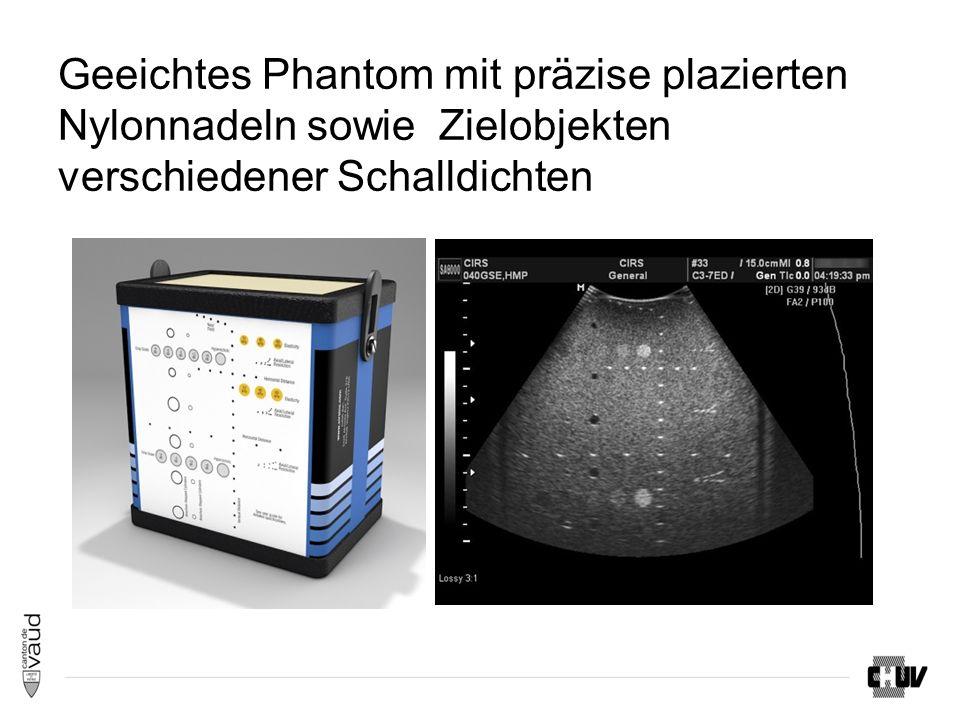 Geeichtes Phantom mit präzise plazierten Nylonnadeln sowie Zielobjekten verschiedener Schalldichten