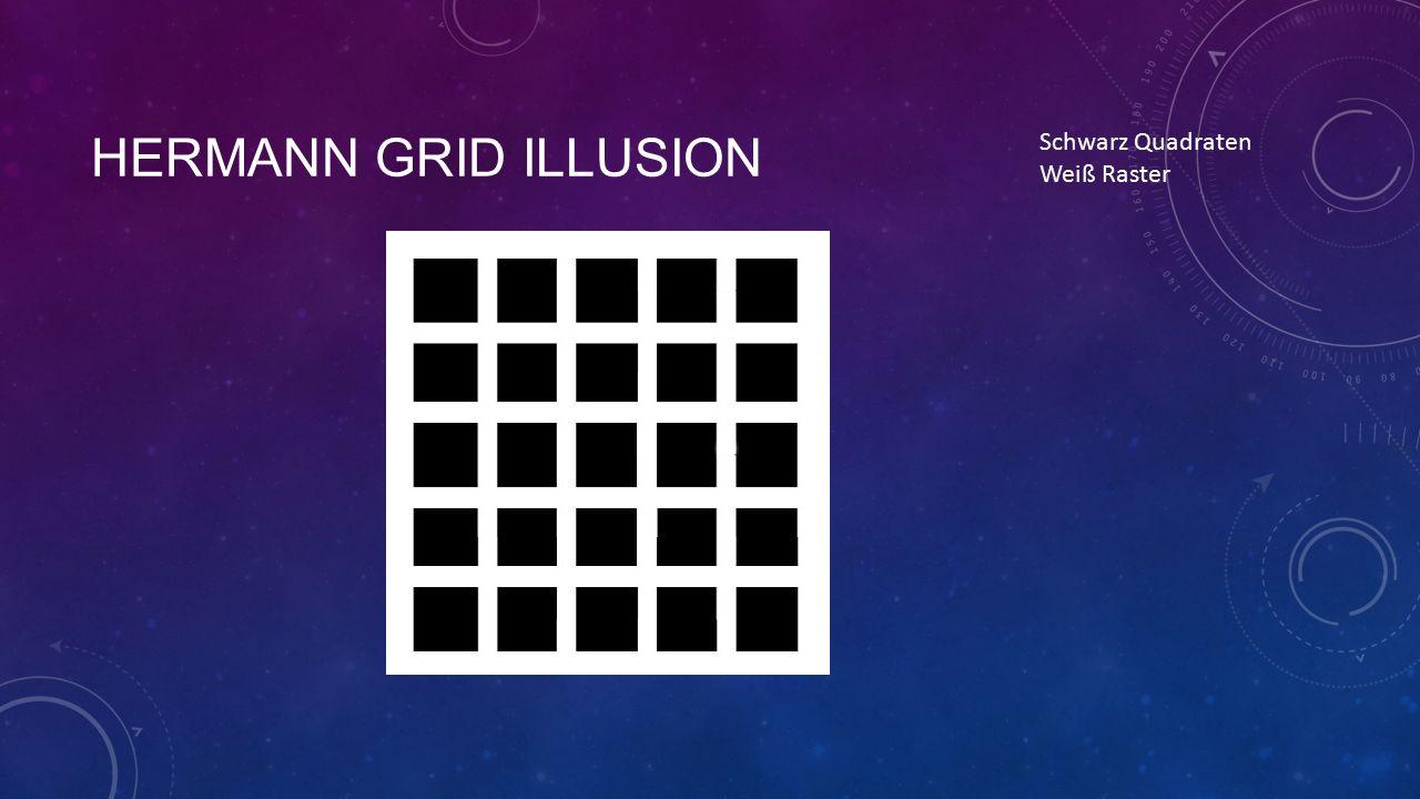 HERMANN GRID ILLUSION Schwarz Quadraten Weiß Raster