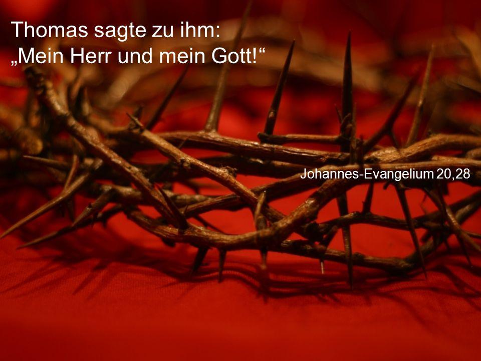 """Johannes-Evangelium 20,28 Thomas sagte zu ihm: """"Mein Herr und mein Gott!"""""""