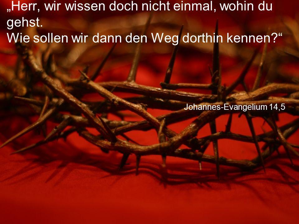 """Johannes-Evangelium 14,5 """"Herr, wir wissen doch nicht einmal, wohin du gehst. Wie sollen wir dann den Weg dorthin kennen?"""""""