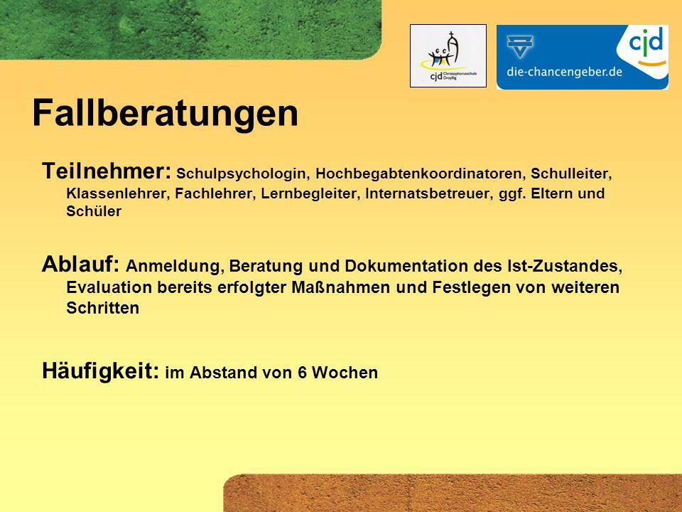 Akzeleration als Prozessmodell - konkrete Umsetzung an der CJD Christophorusschule Droyßig (Heyde 2009)