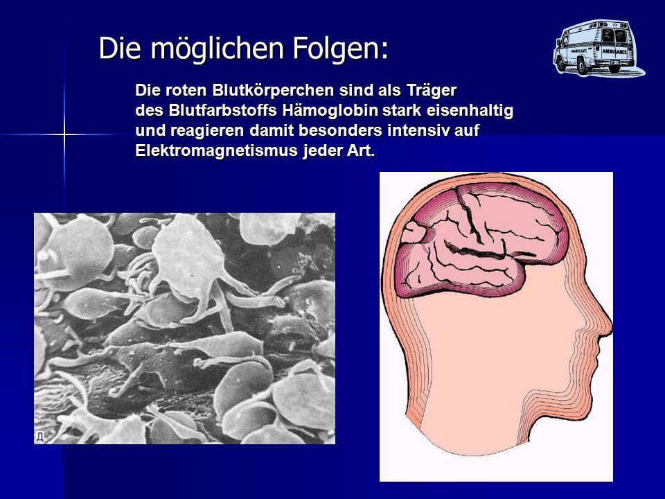 Die möglichen Folgen: Die roten Blutkörperchen sind als Träger des Blutfarbstoffs Hämoglobin stark eisenhaltig und reagieren damit besonders intensiv auf Elektromagnetismus jeder Art.