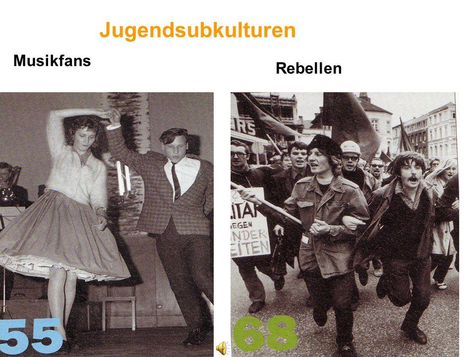 Jugendsubkulturen Rebellen Musikfans