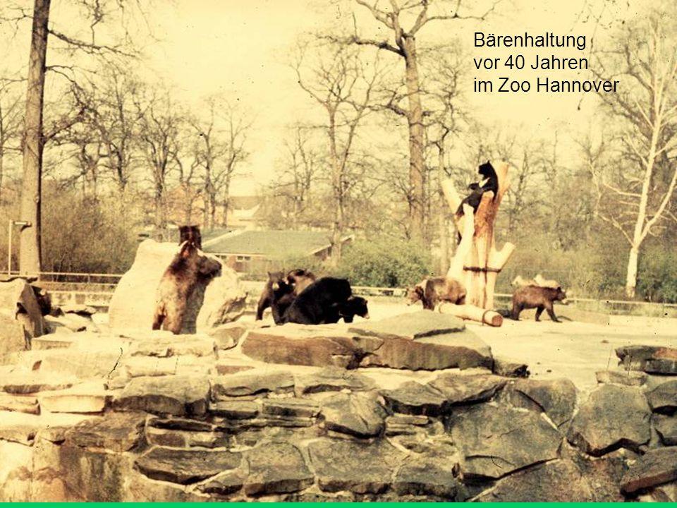 Anforderungen des alten Gutachtens  Die Vorgabe entspricht den Erfahrungen der Bear TAG des Europäischen, Zooverbandes, wonach 150 m² notwendig sind, um die für die Haltung eines Bären erforderliche Infrastruktur unterzubringen.
