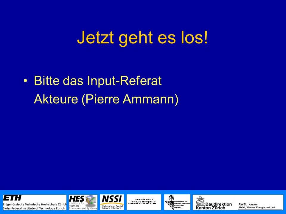 Jetzt geht es los! Bitte das Input-Referat Akteure (Pierre Ammann)