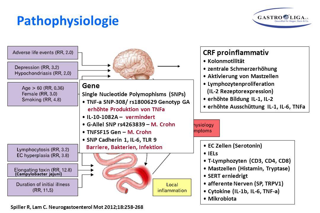 Spiller R, Lam C. Neurogastoenterol Mot 2012;18:258-268 CRF proinflammativ Kolonmotilität zentrale Schmerzerhöhung Aktivierung von Mastzellen Lymphozy