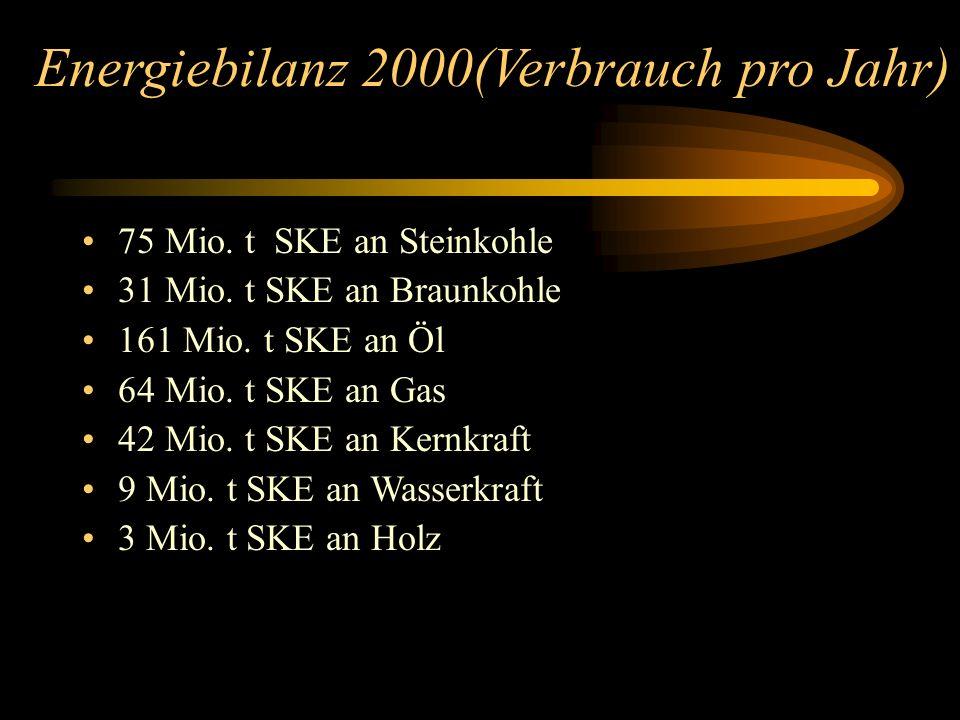 Energiebilanz 2000(Verbrauch pro Jahr) 75 Mio. t SKE an Steinkohle 31 Mio. t SKE an Braunkohle 161 Mio. t SKE an Öl 64 Mio. t SKE an Gas 42 Mio. t SKE