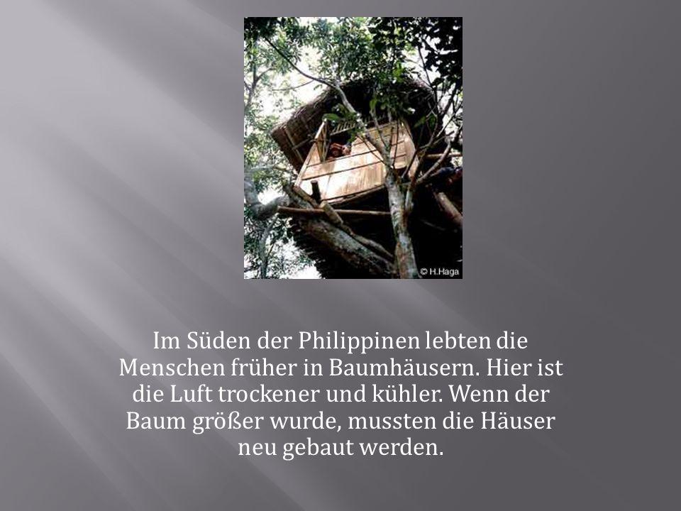 Im Süden der Philippinen lebten die Menschen früher in Baumhäusern.
