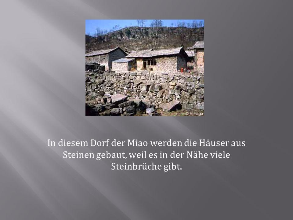 In diesem Dorf der Miao werden die Häuser aus Steinen gebaut, weil es in der Nähe viele Steinbrüche gibt.