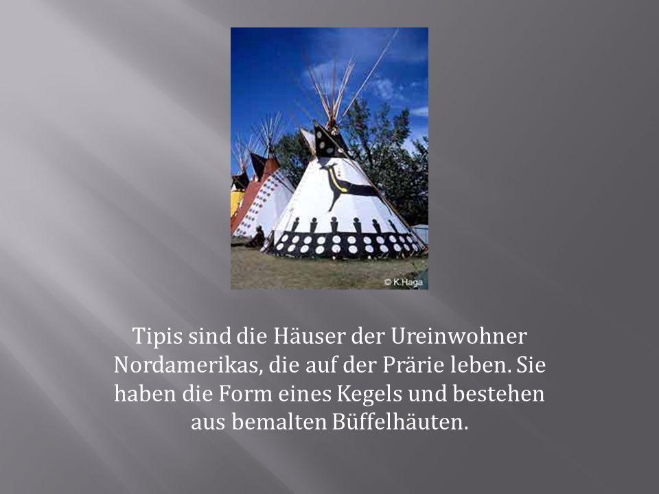 Tipis sind die Häuser der Ureinwohner Nordamerikas, die auf der Prärie leben. Sie haben die Form eines Kegels und bestehen aus bemalten Büffelhäuten.