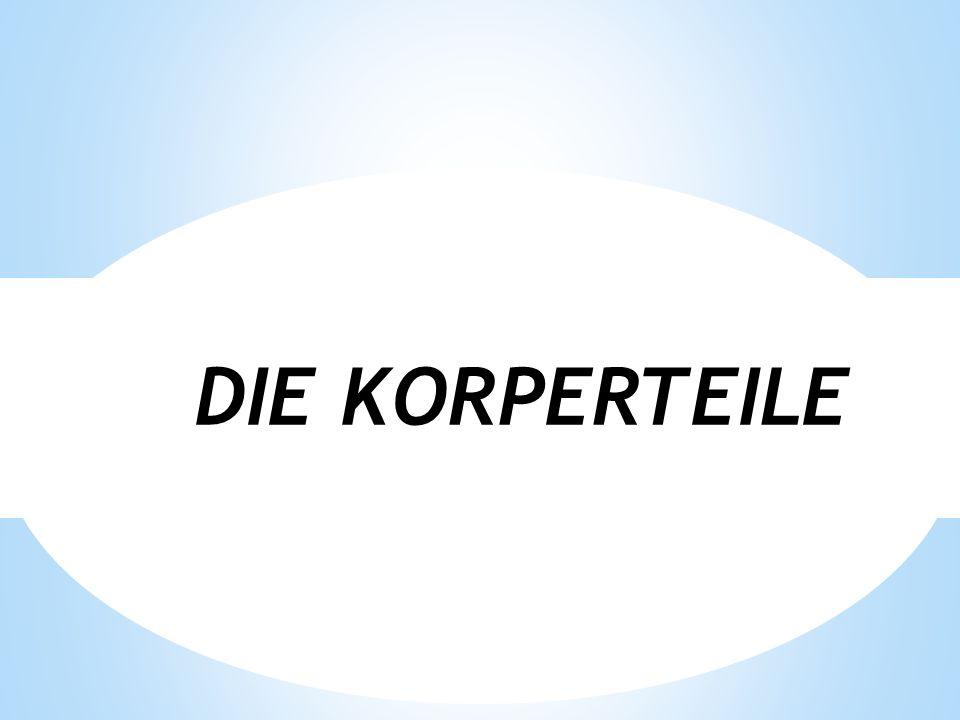 DIE KORPERTEILE