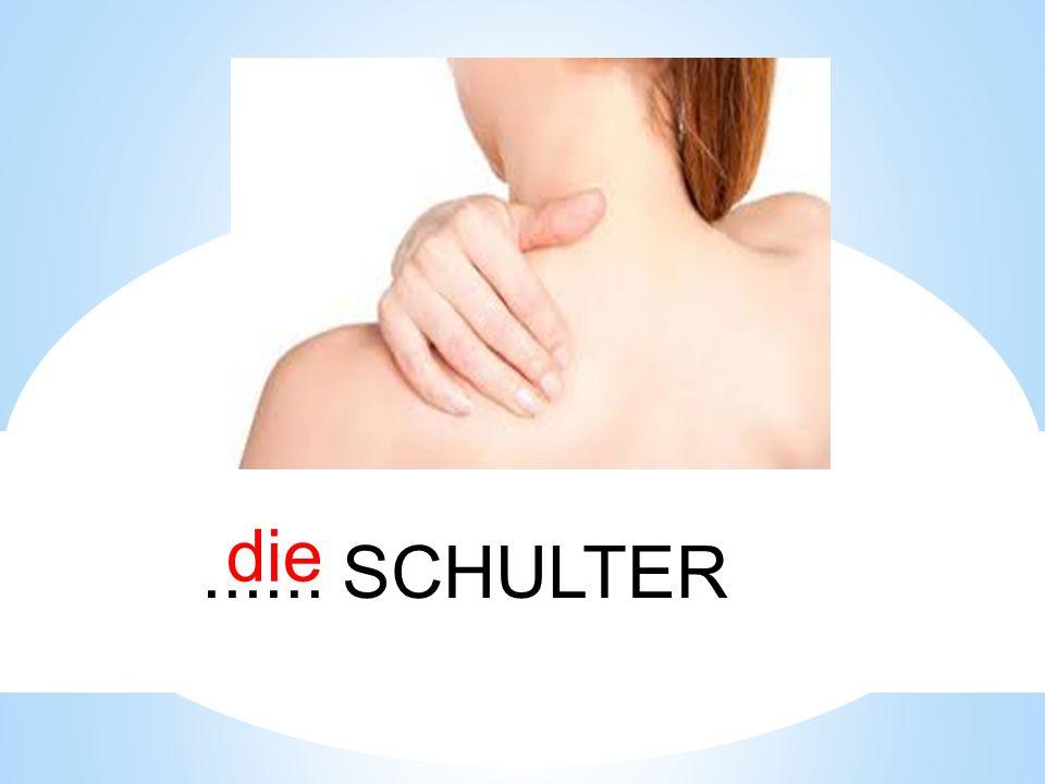 die...... SCHULTER