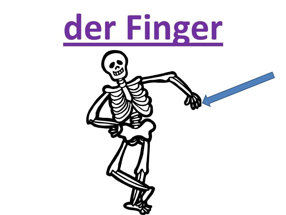 der Finger