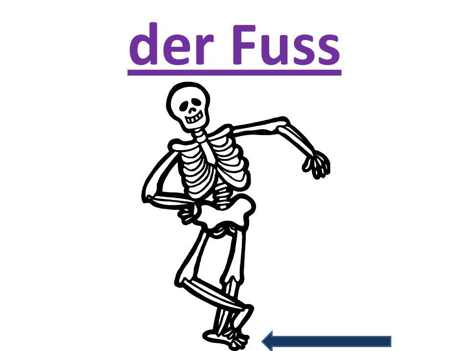 der Fuss